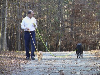 Albert walking Tucker and Jasmine